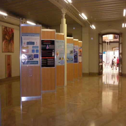 Area de Exposiciones Planta Baja 4